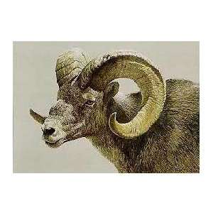 Robert Bateman   Stone Sheep Ram: Home & Kitchen