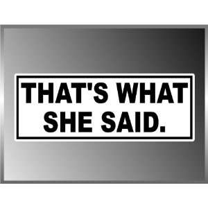Thats What She Said Funny Vinyl Decal Bumper Sticker 3 X