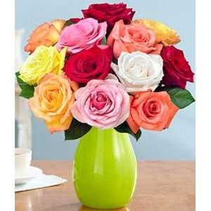 One Dozen Rainbow Roses  Grocery & Gourmet Food