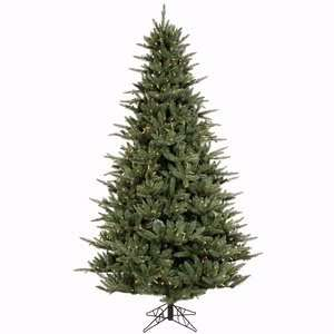 10 x 70 Catalina Frasier Fir Christmas Tree w/ 4097T