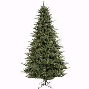 10 x 70 Catalina Frasier Fir Christmas Tree w/ 4097T