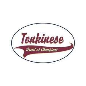 Tonkinese Cat Shirts