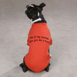 Halloween Clothes This Is My Costume Dog T Shirt