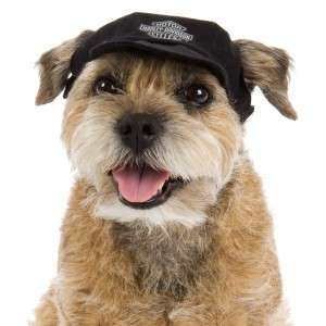 Harley Davidson Black Cotton Baseball Dog Cap Hat SM