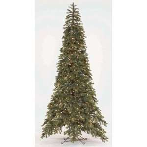 Evergreen Pre lit Christmas Tree Black Hills Spruce