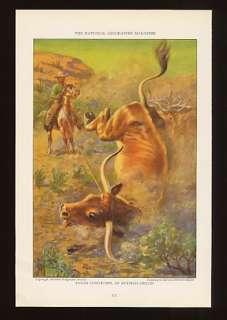 1925 Edward Herbert Miner Cowboy Ropes Texas Longhorn Color Print
