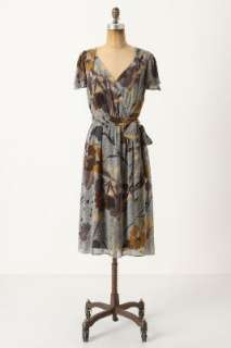 Anthropologie   Bronwen Dress