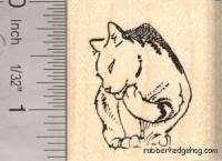 Cute Grooming Cat rubber stamp D12211 WM Kitten