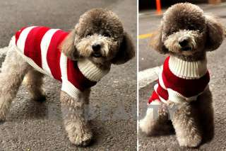 Red White Stripe Pet Dog Clothes Apparel Warm Coat Sweater Outfits