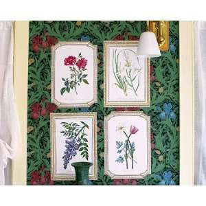 Wallies Anna Griffin Framed Botanical Floral Wallpaper