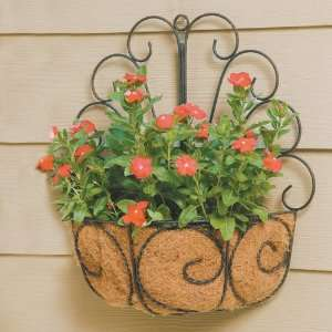 Wrought Iron Peacock Wall Basket Planters with Coco Liner