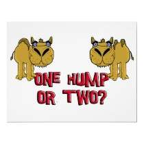 One Hump or Two Schnozzle Camel Cartoon Poster by THarmonArt