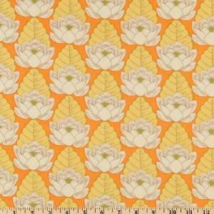 45 Wide Amy Butler Lotus Pond Tangerine Fabric By The
