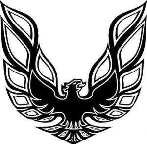 HUGE Firebird Pontiac hood emblem logo vinyl car FB 519
